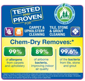 allergens removed from upholstery cleaning