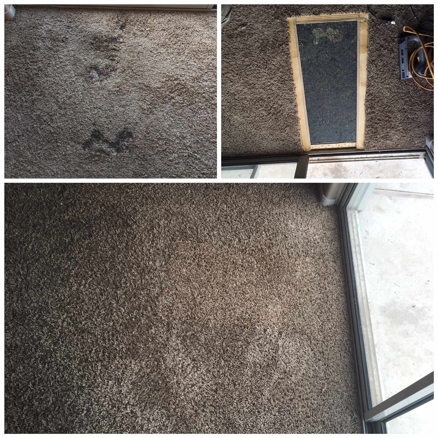 carpet repair services in glendale az
