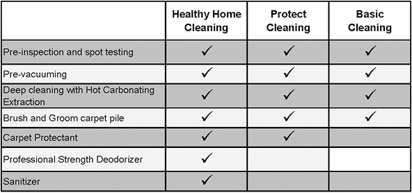 Carpet Cleaning healthy home and protectant