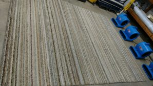 rug cleaning services in glendale az