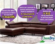 Upholstery Cleaning Arizona