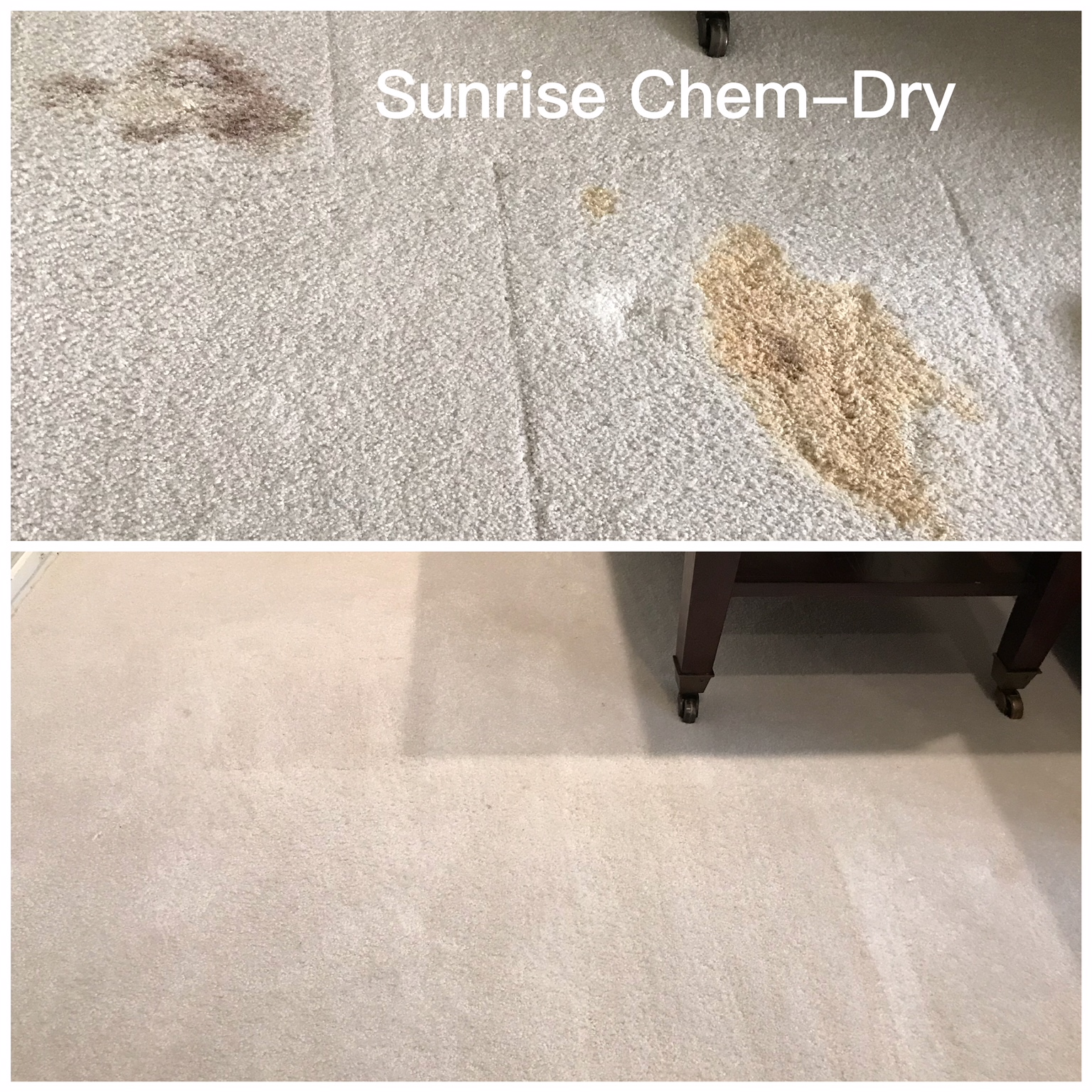 Sunrise-Chem Dry how to remove blood from your Carpet Repatching